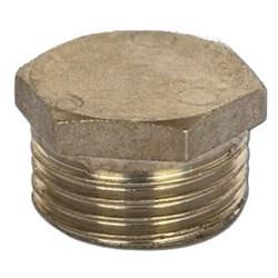 Заглушка 20 НР никель - фото 7046
