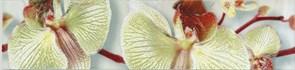 Бордюр Алькора 2 275222 6x25см, для плитки настенной керамической облицовочной, глянцевый, оливковый с рисунком цветы
