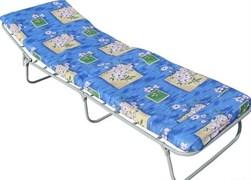 Кровать раскладная (раскладушка) Эконом М, 240x650x1920мм, металлическая на тканевой основе, с несъемным матрацем, максимальная нагрузка 90кг
