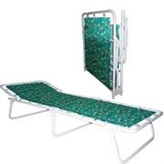 Кровать раскладная (раскладушка) детская Дрема-М3, 260x600x1500мм, металлическая на тканевой основе, без матраца, максимальная нагрузка 60кг