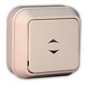 Выключатель одноклавишный 1 ОП Макел 45205, открытой проводки, проходной, кремовый