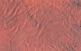 Кожа искусственная мебельная (винилискожа/дерматин), 1.4-1.5м,  на трикотажной основе, матовая, рыжий, на метраж