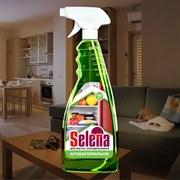 Средство моющее для холодильников антибактериальное Selena с распылителем, 500мл