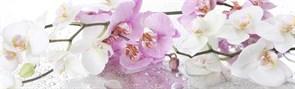 Фартук кухонный Ветка орхидеи, 3000х600х1.5мм, пластик АВС, термопечать