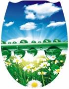 Сиденье для унитаза Фотопринт Утренняя роса, 450x370мм, пластиковое