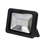 Прожектор светодиодный Эра СДО-5-10, 10Вт, 6500К, 800Лм, IP65