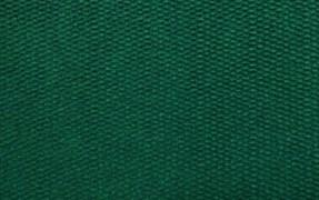 Коврик напольный Floor mat (Траффик), 40х60см, влаговпитывающий, зеленый