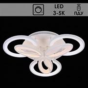 Люстра подвесная LED-встроенная 5943/3+3, диаметр 590мм, LED 2x69W, 3000-5000K, ПДУ, диммер, WT белый, SDA19