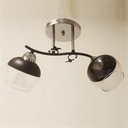 Люстра подвесная 2-рожковая 4634/2, 2х40W, E27, длина 460мм, высота 220мм, CR+BK черный/хром, XLD20