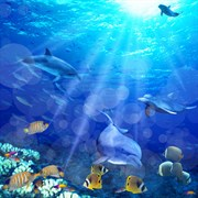 Штора для ванной комнаты 02-09 BRIMIX Морское дно